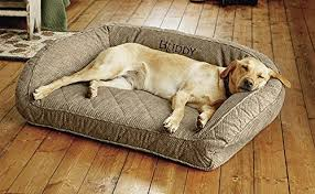 Tempur Pedic Dog Bed Top 15 Best Dog Beds For Large Dogs Reviews In 2017