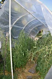 Vegetable Garden Netting Frame by Wshg Net Cold Frames Cloches Hoophouses Featured The Garden