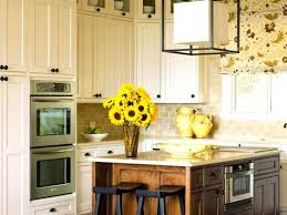 Kitchen Cabinet Refacing Cost Kitchen Cabinets Kitchen Cabinet Refacing Costs Cute Cabinets