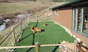 landscaping plans for dogs unique landscape