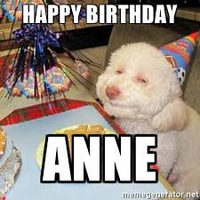 bichon frise meme happy birthday anne birthday dog meme generator