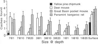 interspecific variation in the olfactory abilities of granivorous