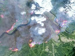 Wildfire Deaths Per Year by Fort Mcmurray Fire Canadian Officials Strive To Get U0027death U0027 Grip