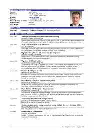 Building A Good Resume Example Great Resume Examples Of A Great Resume 85 Stunning Good