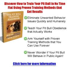 american pitbull terrier book pit bull training tips tricks and resources to a well trained