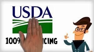 100 financed rural development loans a k a usda home loans