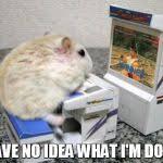 Arcade Meme - hamster arcade meme generator imgflip