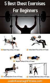 Bench Press Program Chart 5 Best Chest Exercises For Beginners