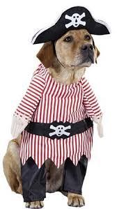 amazon com pet pirate dog halloween costume size small pet