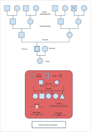 31 genogram templates u2013 free word pdf psd documents download