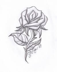 hoontoidly rose drawings in pencil images