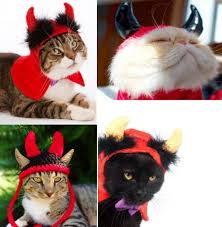 Halloween Costume Cats Cute Halloween Costumes Cats Image Gallery Animalwised