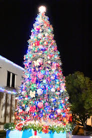 hundreds attend cayman brac rotary christmas tree lighting