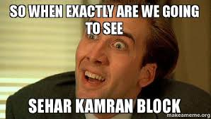 Exactly Meme - so when exactly are we going to see sehar kamran block make a meme