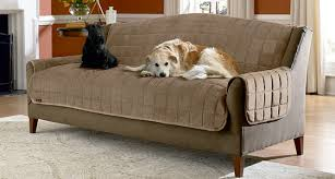Sofa Cover Waterproof The New Waterproof Sofa Cover For Pets House Plan Clubnoma Com