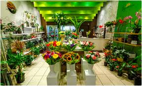 flowers store modern floral boutique with flower shop part weneedfun image 19 of