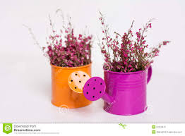 watering cans with flowers stock photos image 25400583