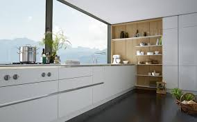 Kitchen Cabinets Without Handles Modern Kitchen With Dark Floors Exclusive Home Design