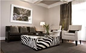 Creating Zebra Room Decor Theme
