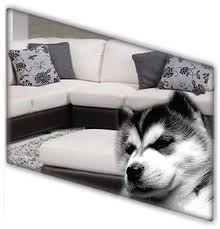 Sofa Cleaning Adelaide Upholstery U0026 Leather Cleaning Go Clean Carpet Cleaning Adelaide