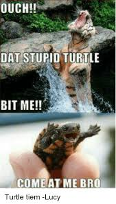 Come At Me Meme - ouch dat stupid turtle bit me come at me bro turtle tiem lucy