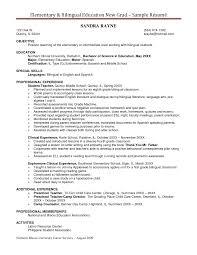 Personal Carer Resume Resume Templates Child Care Supervisor Provider Resume Cv