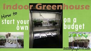 5 good indoor hydroponic kits for growing your home herb garden