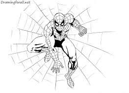 amazing spider man drawing tutorial drawingforall net