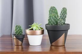 decoration avec des pots en terre cuite diy comment donner une allure moderne aux pots de fleurs en terre