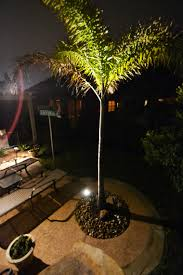 outdoor landscaping lights katy outdoor lighting services