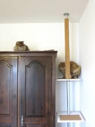 Diy Ikea Diy Ikea Stolmen Hack Cat Tree Meow Lifestyle