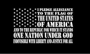 Flag It Stickers American Flag Pledge Decal Sticker