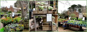 native plant nursery melbourne garden nursery melbourne homewood nursery