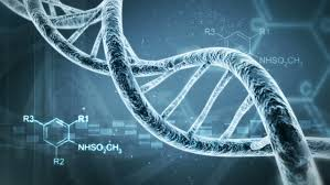 golden ratio dna spiral free dna stock video footage download 4k hd clips
