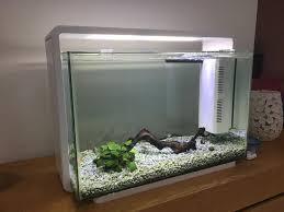 superfish home 60 contemporary modern white aquarium tropical