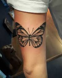 beautyepic com wp content uploads 2017 04 butterfly on