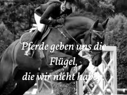pferdesprüche pferdesprüche zum nachdenken und träumen