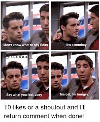 Say What You Meme - i don t know what to say ross say what you feel joey it s a monkey