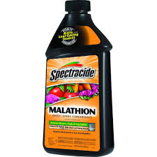 Insecticide For Vegetable Garden by Spectracide 32 Fl Oz Malathion Concentrate Hg 30900 2 The Home