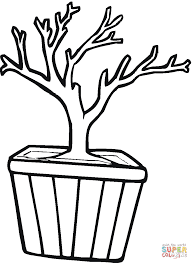 bonsai in a pot coloring page free printable coloring pages