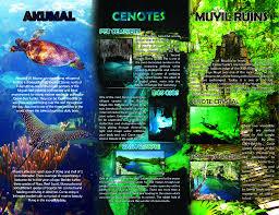 Tulum Map Avatar Adventures Tours In Tulum Tulum Living City Guide And