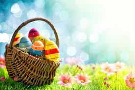 easter egg basket annual egg hunt returns to dctc dctc news