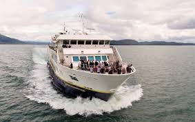 big cruise wrap travel weekly