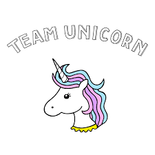 team unicorn t shirt tee one team unicorn born in amterdam