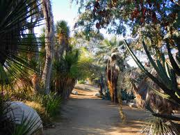 Balboa Park San Diego Map by 19 Best Hiking Trails In San Diego San Diego Hikers