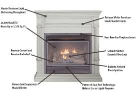 Dual Gas And Wood Burning Fireplace by Duluth Forge Dual Fuel Ventless Gas Fireplace 26 000 Btu Remote