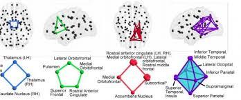 how the mathematics of algebraic topology is revolutionizing brain
