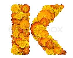 Yellow Orange Flowers - letters from alphabet from yellow and orange flowers isolated on