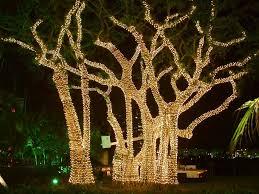 accessories decorators near me led string tree