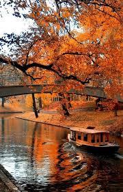 25 autumn leaves ideas autumn colours autumn